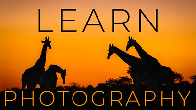 Learn Photography Video Tutorials