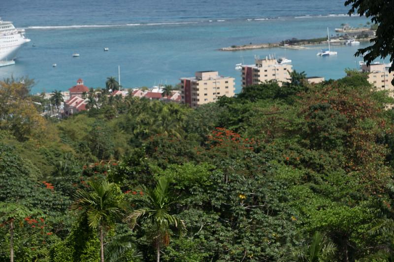 227-jamaica-6699.JPG