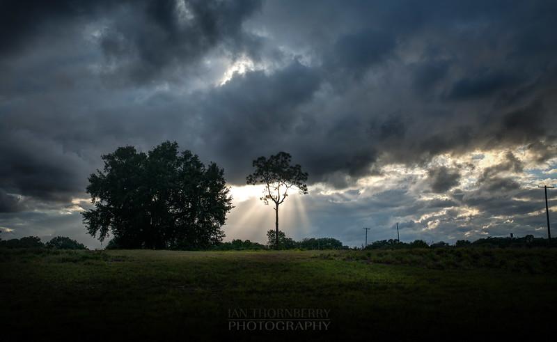 contrasty sunset san ann (2 of 2).jpg