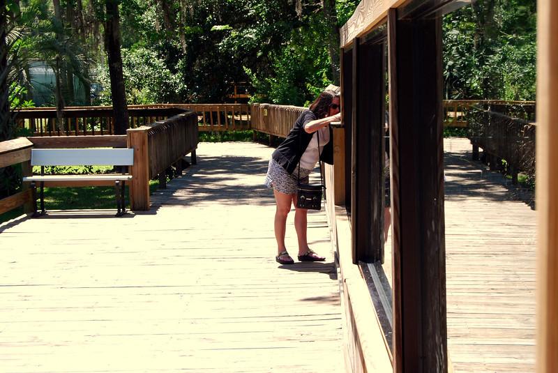 2014 Zoo in Sanford, Florida (5).JPG