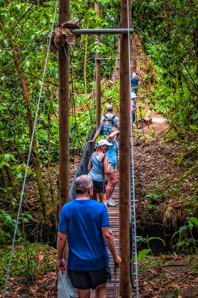Costa Rica 2016 20160405-13-43-_MG_2660-006-Edit.jpg