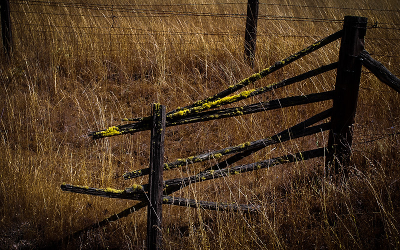 Fence, California, 2003