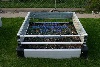 Slideshow 8955 Garden 2011