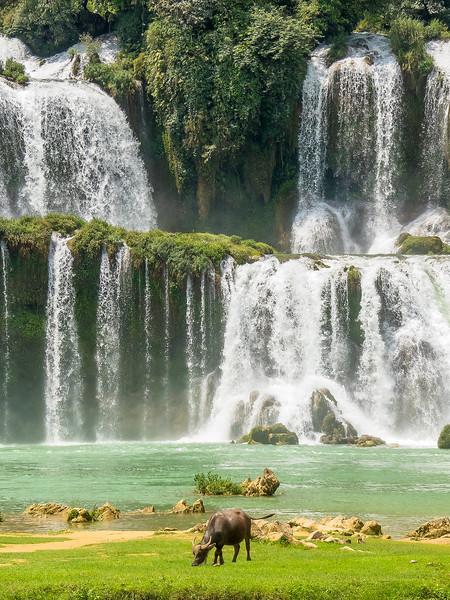 Vietnam Ban Gioc Falls_P1120742.jpg
