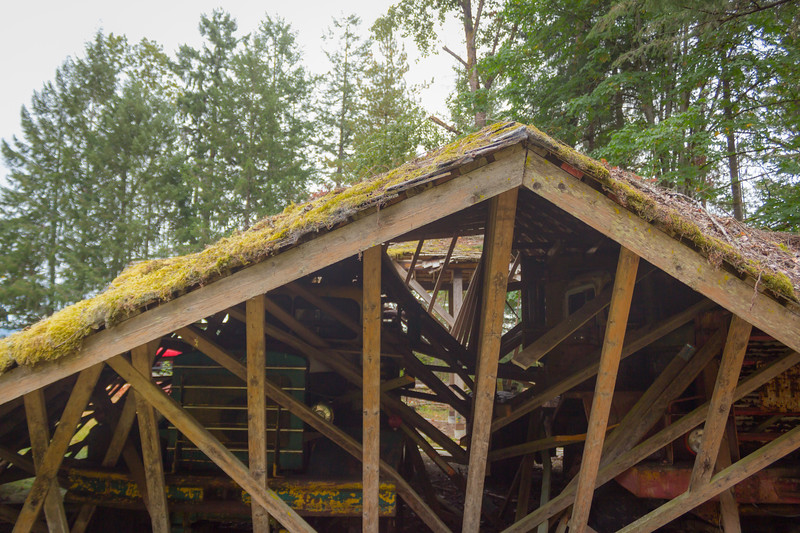 bc forest discovery centre-22.jpg