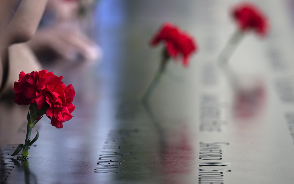 . Carnations are left on names inscribed into the North Pool during 9/11 Memorial ceremonies marking the 12th anniversary of the 9/11 attacks on the World Trade Center in New York on September 11, 2013 in New York City.   (Photo by Adrees Latif-Pool/Getty Images)