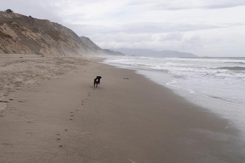 ocean beach quarantine 1224035-30-20.jpg