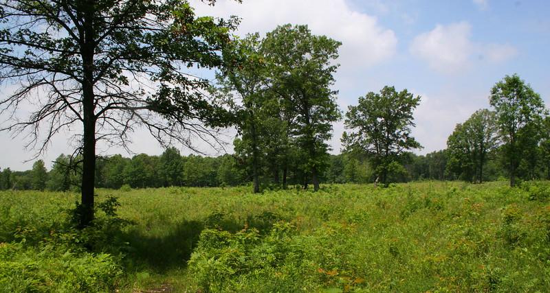 Ohio Hikes