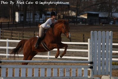 2-21-2010 Hunter/Schooling Show Sharon Oaks Stables