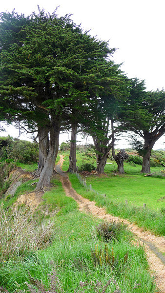 New Zealand - Stewart Island