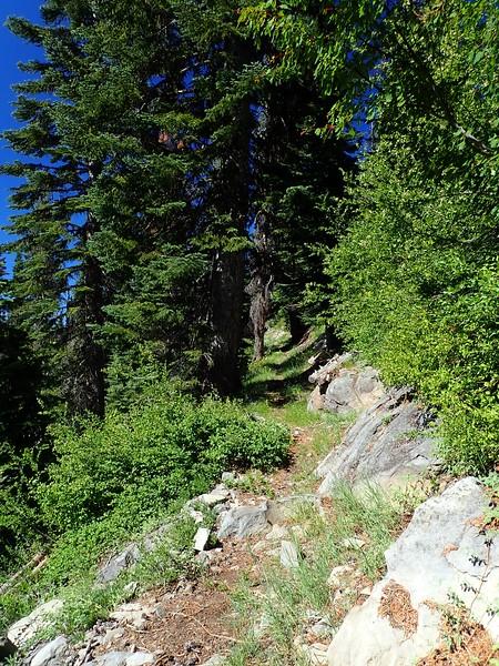 Stuart Falls Sky Lakes Wilderness Oregon