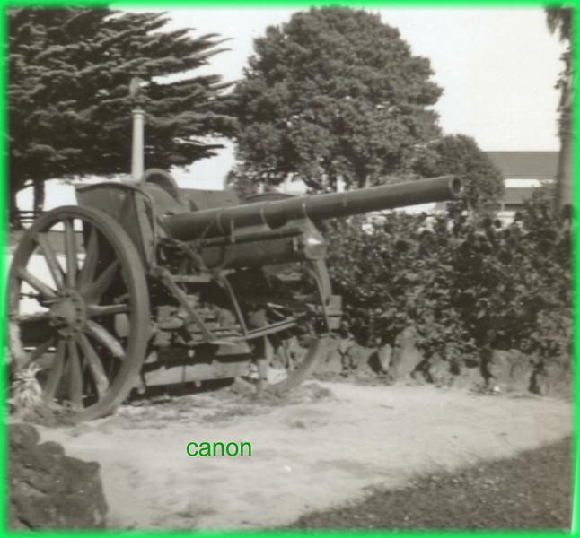 canon135.jpg