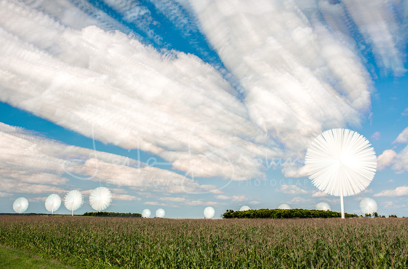 Windmills clouds time lapse.jpg