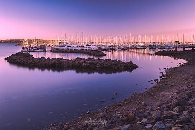 Smith Cove June 2021