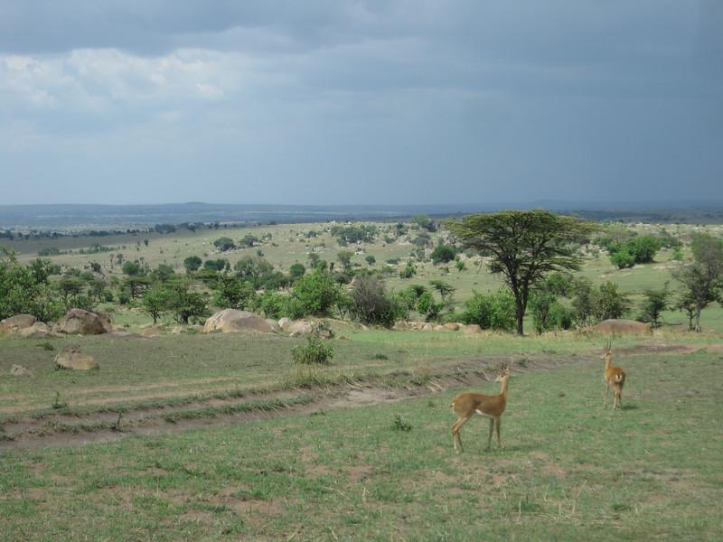 Tanzania14-3652.jpg