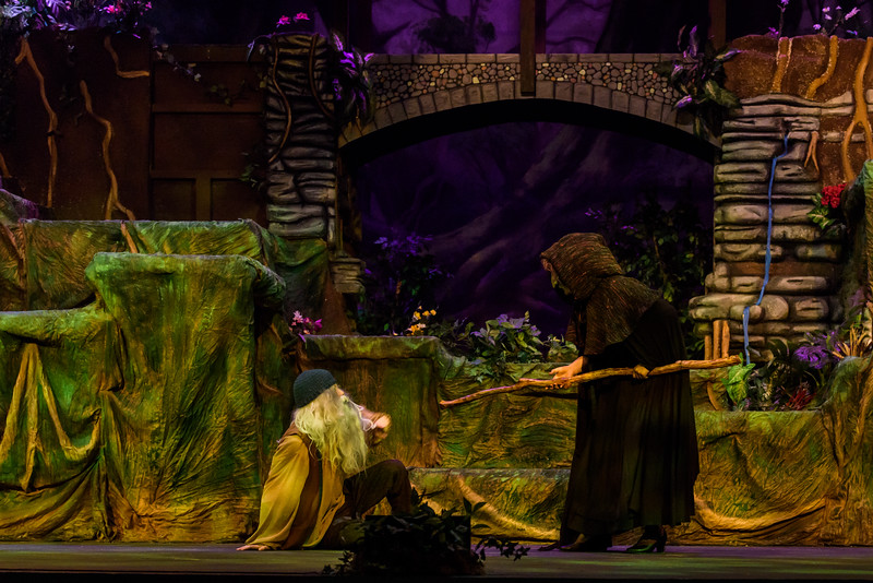 20150423 Into the Woods8881.jpg