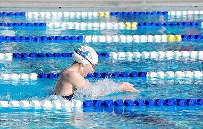 Swim/Dive Clear Brook and Lamar