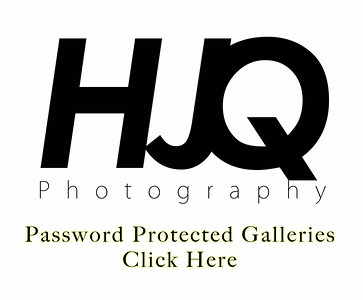 Parties - Password Protected Galleries