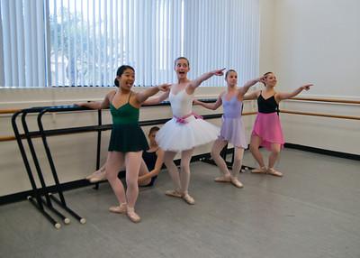 OCHSA DANCE - ELECTIVE CLASSES