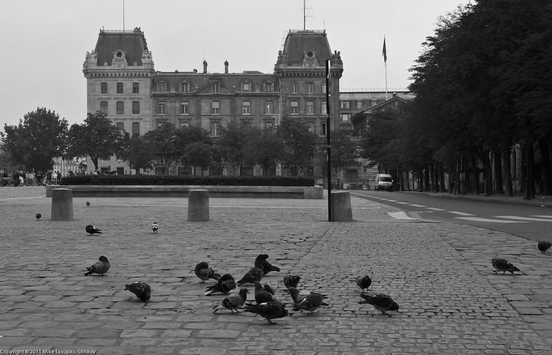 Paris. Le parvis Notre-Dame