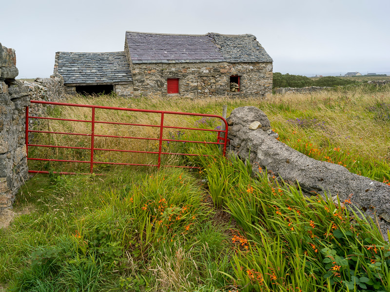 Abandoned stone building in field, Mullet Peninsula, Binghamstown, Erris, County Mayo, Ireland
