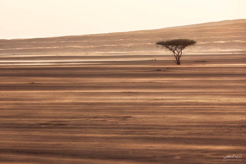 Oman Desert (59).jpg