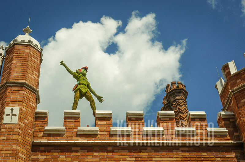 Disney8.jpg
