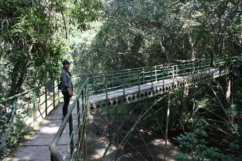 Jinghong, Wild Elephan Valley, walking back to the base