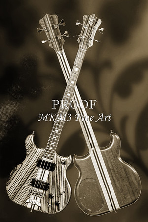 Alembic Bass Guitar Black and White Wall Art Photographs