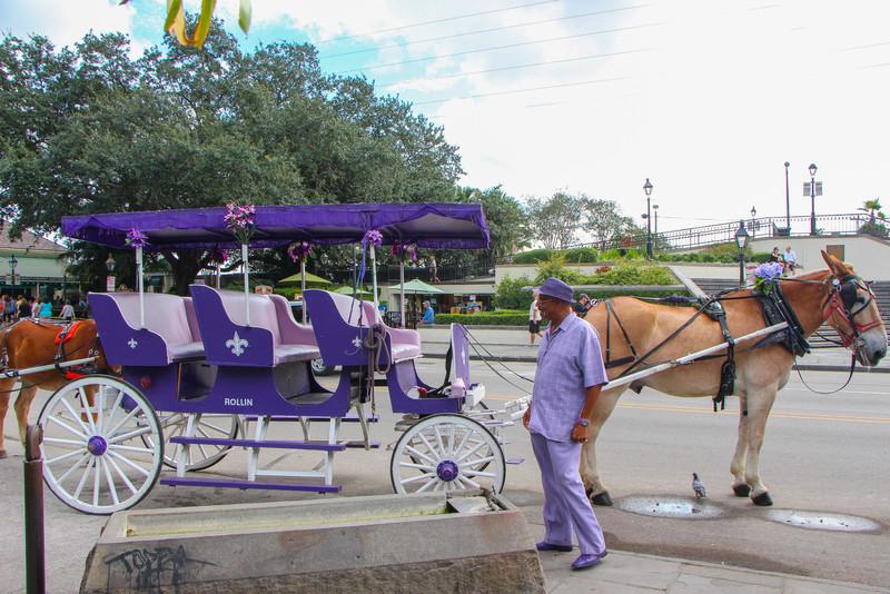 Mule wagon near Jackson Square...
