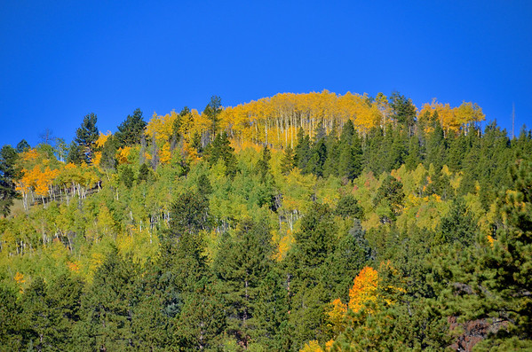 Hell's Hole & Squaw Pass Aspens Oct 2013