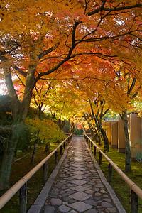 Kôetsu-ji — 光悦寺