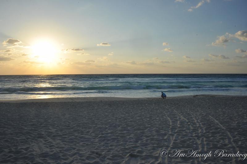2013-03-30_SpringBreak@CancunMX_219.jpg