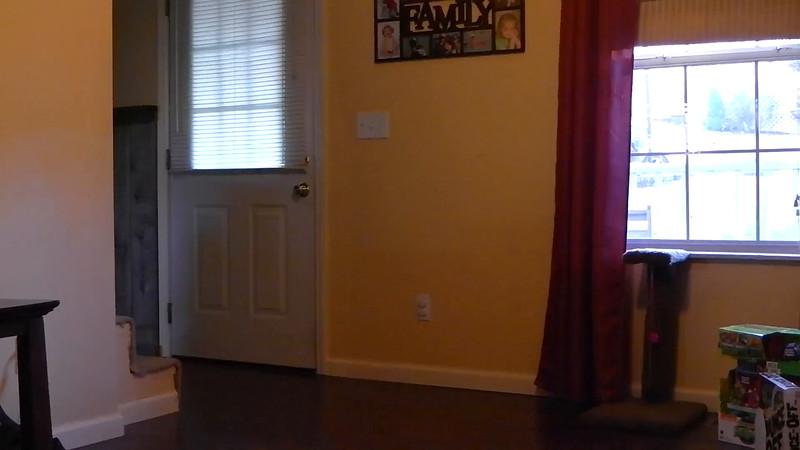 video-christmas-sydney-cooper-butt.MP4