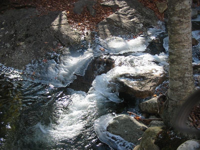 Feeder brook to Nancy Brook