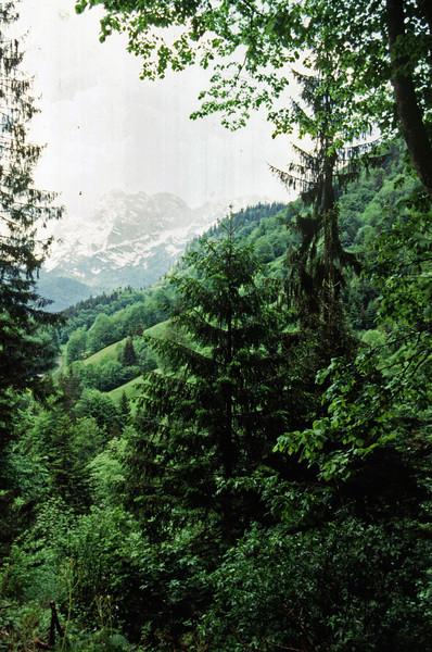 Austria 1995 - 37.jpg
