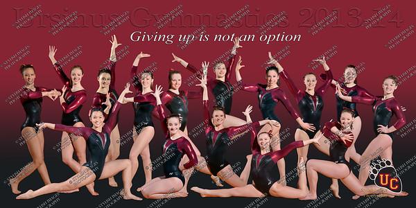 Gymnastics 2013-14
