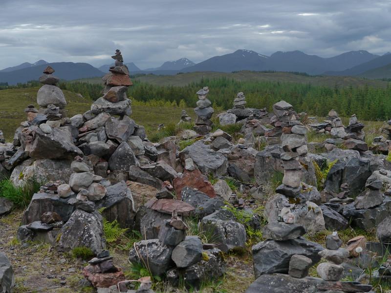@RobAng Juni 2015 / Inchlaggan, Caol and Mallaig Ward, Scotland, GBR, Großbritannien, 342 m ü/M, 2015/06/25 16:59:29