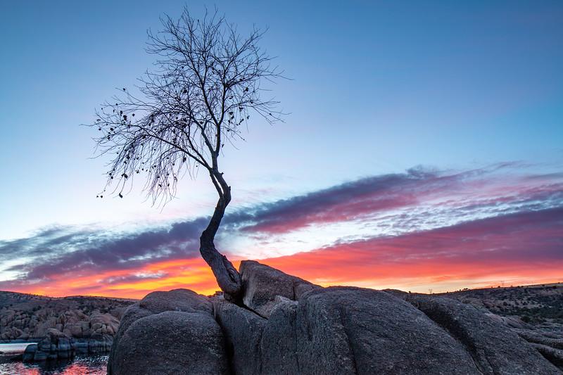 Watson Sunset-1.jpg