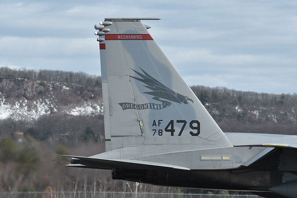 F-15 Eagles of the 142nd Fighter Wing