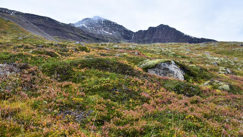 Iceland_2015_10_05_14_49_30.jpg