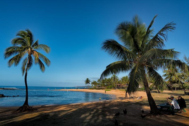 2015-02Feb01-Hawaii-336-Edit-Edit-Edit-Edit.jpg