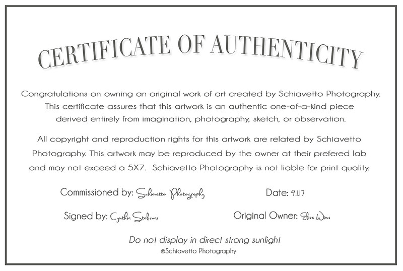 Certificate of Authenticity-Wims.jpg