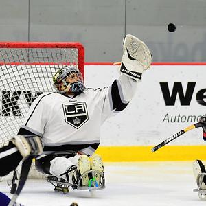 2019 Sled Hockey Tournament