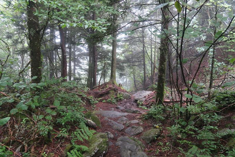 Underwood Trail -- 5,450'