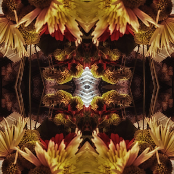 Mirror16-0006 16x16.jpg