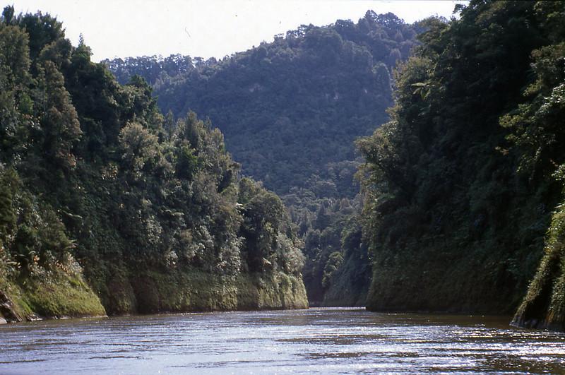 NZ_003.jpg