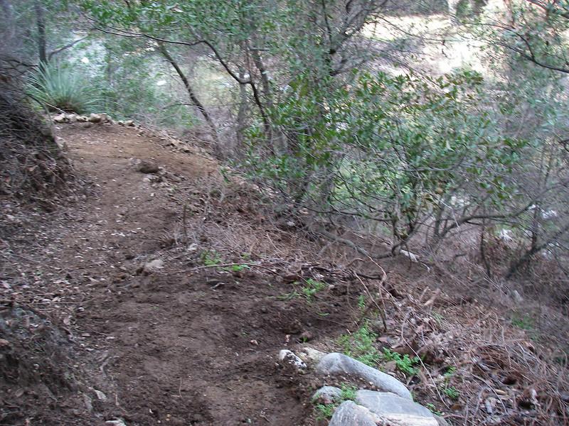 20080202043-Corba Ken Burton Trailwork.JPG