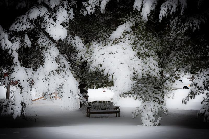 02-04-2021-winter-10.jpg