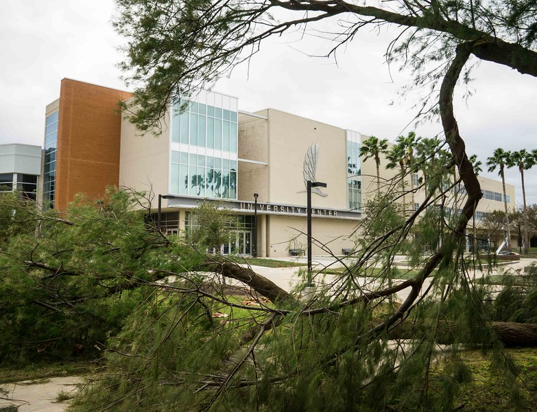 campus-05589.jpg